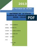 Informe Visita a Calana(. David Conde Copa)