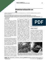 Biominerlizacion de Estromatolitos