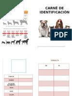Carnè de Vacunaciòncartilla de vacunacion para perros