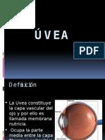 Úvea.pptx