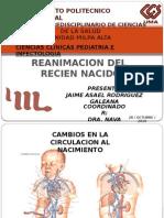 Reanimacion Del Rn