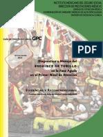 GPC ESGUINCE TOBILLO 2013.pdf
