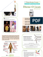 Dieneolean Bifold Brochure