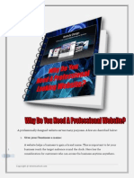 Why Do You Need a Professional Website (Autosaved)