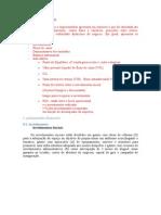 Exemplo de Plano Financeiro Pin