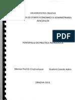 Model Raport Practica Pedagogica