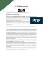 Asignatura. C. Canaria.pdf