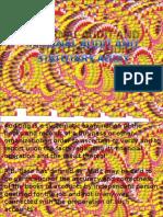 internalauditandstatutoryaudit-130325135151-phpapp01