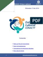 EnlaceLaboral_AreaConocimiento_Diciembre-2014-122014.pdf