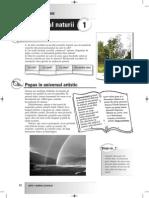 1.1.arte elev.pdf