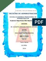 PLAN-DE-PRACTICAS-IRASI.docx