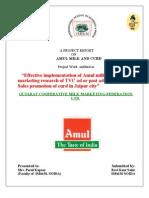 Amul Projects by Ravi Kant Saini