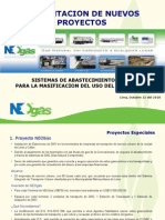 101012 Presentación NEOgás ViceMinistroEnergía