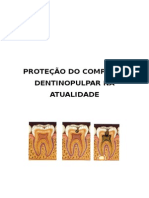 206566821 Protecao Do Complexo Dentino Pulpar Resumo