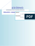 plan de cuidados- prolapso - copia.docx
