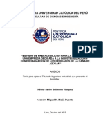 Guillermo Nestor Estudio Prefactibilidad Industrializacion Comercializacion Derivados Caña Azucar Anexos