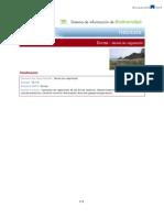 Dunas.pdf