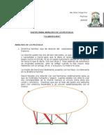 Analisis Pelicula t Fam Claroscuro