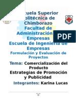 (5)Comercializacion y Estrategias Tema 5 Proyectos Este