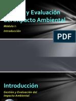 Gestión y Evaluación del impacto Ambiental