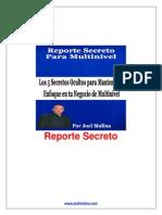 Los 5 Secretos Multinivel