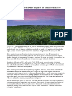 La Tecnología Salvará Al Vino Español Del Cambio Climático