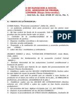 AUDIENCIA PRELIMINAR (Desarrollo)