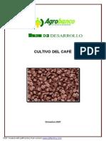 1 Cultivo Del Cafe