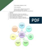 Estructura Del Plan de Manejo Ambiental