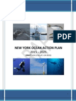 oceanactionplan.pdf