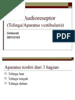 Sistem Audioreseptor Dan Kulit