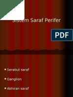 Sistem Saraf Perifer Dan SSP