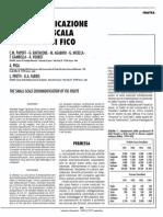 Papoff C Articolo 1997 Deumidificazione