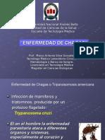 14 Enfermedad de Chagas