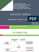 Adultez Tardia papalia