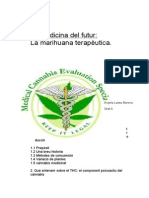 TREBALL DE RESERCA.docx