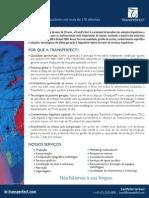 TransPerfect Do Brasil