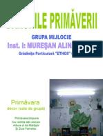 0_1primavara