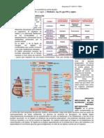 R-T33-interrelaciones-11 (1)