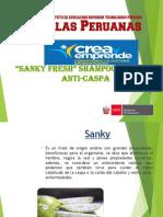 Proyecto Shampoo Sanky-diapositivas Ok