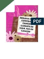 Plan de Trabajo Semana Peru Contra El Cancer