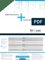 2014 Bit9 Corporate Brochure
