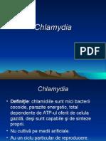 Chlamydia Rom
