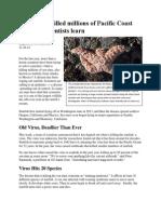 article - virus killed millions of sea stars newsela