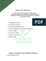 Perfil Del Proyecto de Reforestacion - Presentar