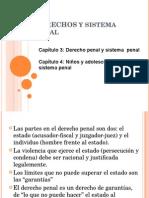 Derechos y Sistema Penal - Cap. 3 y 4