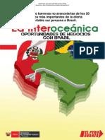Requisitos y barreras de la oferta exportable hacia Brasil