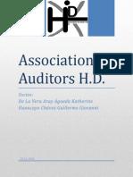 Association Auditors H.D.