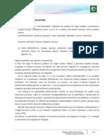 Lectura 2. Edad Media en España- Legislación Visigoda y El Derecho Foral