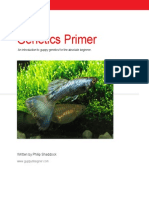 Guppy Genetics Primer